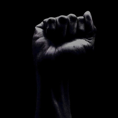 picture of a fist raised in a power salute